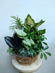 European Garden Basket - Small