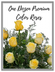 One Dozen Premium Roses - 4 Colors to choose from!