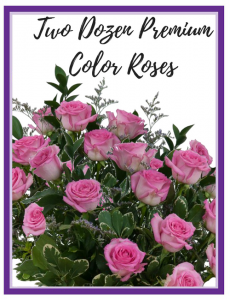 Two Dozen Premium Roses   - 4 Colors to choose from!